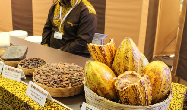 Stand Cote d'Ivoire cacao